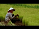Диб Про диктаторов разных стран Пол Пот и его кроваво красные Кхмеры