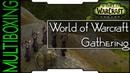 Multiboxing — World of Warcraft Gathering