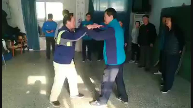 Pushing hands tuishou yiquan: Yao Chengrong.