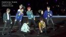 BTS DNA (2)