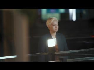 MONKEY _u0026 DOG ROMANCE - Trailer 2