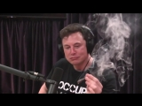 Elon Musk Smokes Weed - Joe Rogan Podcast