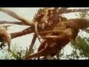 Monsterverse - Kong: Skull Island - Mother Longlegs