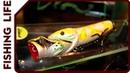 Экзотические приманки MIMIX и поимка трофейного ельца в бассейне (Охота и рыболовство на Руси 2015)