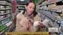 Покупателей в России больше не обманут сметанкой
