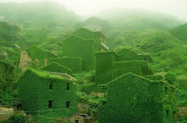 Заброшенная рыбацкая деревня наглядно иллюстрирует, как природа показывает свое превосходство над человеком. Это место было находится у подножия реки Янцзы на островах Шенгси в Китае. Некогда