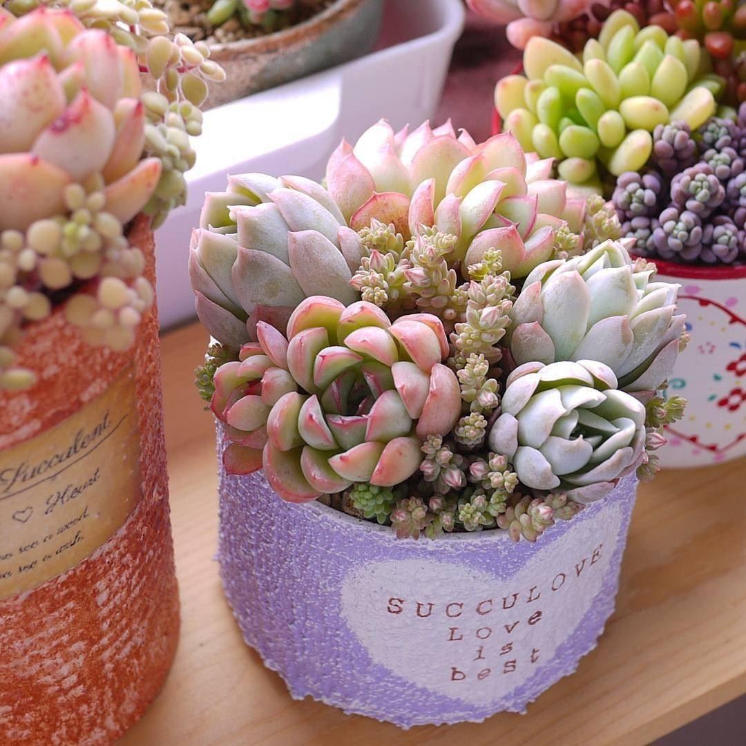 Декоративные цветы для украшения