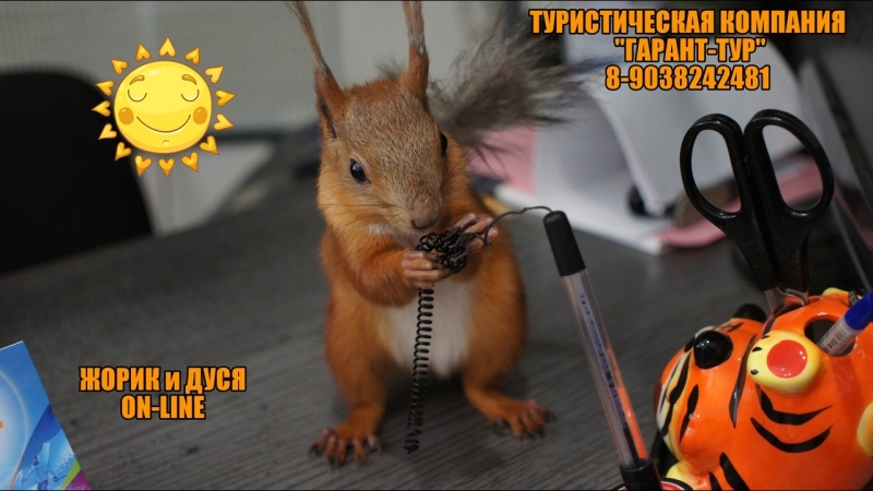 Live ЖОРИК ДУСЯ алтайская парочка в офисе туркомпании