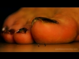 Giantess LY HETAGG SFX
