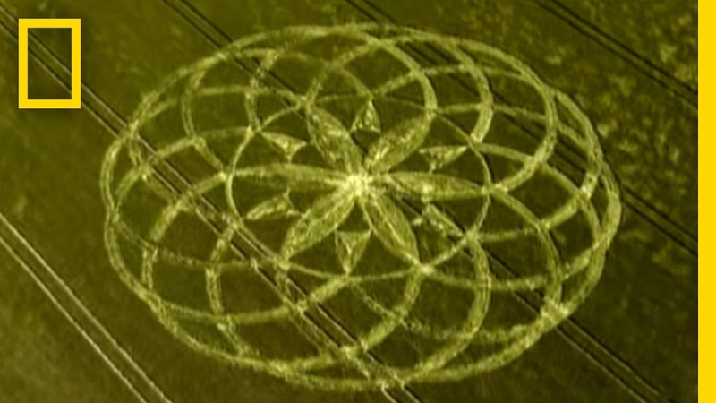 Crop Circle Mystery National Geographic