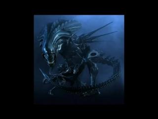 prana ★ alien pets ★ free tibet mix