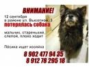 Рекламный блок, 1min. Эфир СОЮЗ-ТВ 01.10.2018