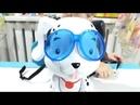Интерактивная Собачка Little Tikes Плыви ко мне