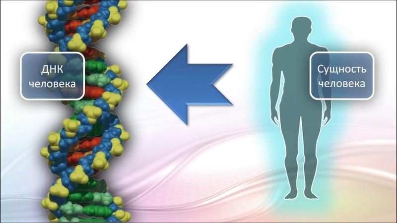 Онлайн-встреча. Активация генетики. Часть 1