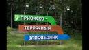Зубровый Приокско террасный Заповедник Город Серпухов