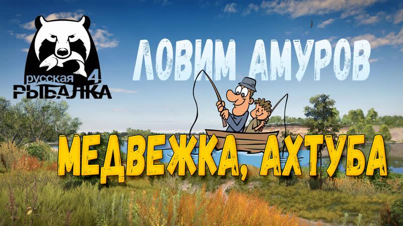 РУССКАЯ РЫБАЛКА 4 - ЛОВИМ АМУРОВ. МЕДВЕЖКА, АХТУБА!