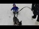 Катаемся по первому снегу на санках