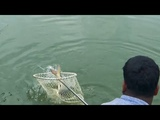 Big Rohu Fishing Videos By Manik Using Rod &amp Reel