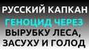 РУССКИЙ КАПКАН ГЕНОЦИД ЧЕРЕЗ ВЫРУБКУ ЛЕСА ПОСЛЕДУЮЩУЮ ЗАСУХУ И ГОЛОД Док Фильм 2018