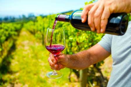 В равной степени натуральные вина представляют собой устойчивость к серийному производству в промышленных масштабах, которое утоляет жажду многих во всем мире.