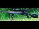 Gamo Coyote test 60 m