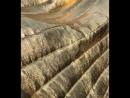 Золото Италии 🇮🇹 часть 2 Стёганная плащевка