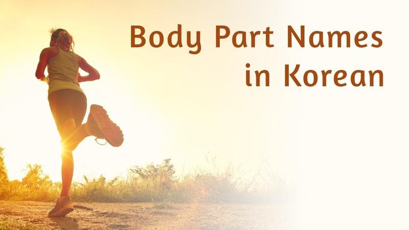 Body Part Names in Korean