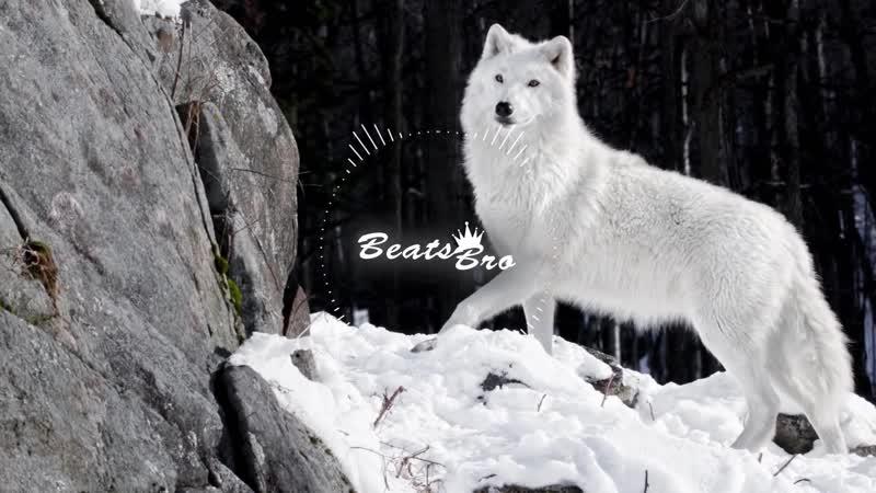 StaFFорд63 SH Kera Одинокий Волк Премьера 2019 HD