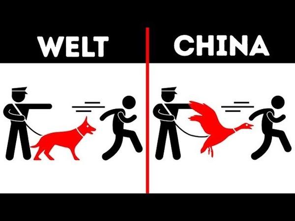 12 bizarre Dinge, die du nur in China sehen wirst