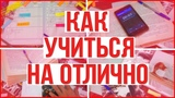 КАК УЧИТЬСЯ НА ОТЛИЧНО? // ШКОЛЬНЫЕ СОВЕТЫ! // ШКОЛЬНЫЕ ЛАЙФХАКИ // Back to shool // Yana Cyrus