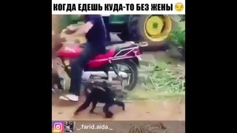 Когда едишь куда то без жены