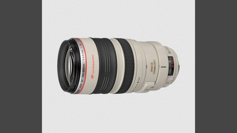 Canon EF 100-400 mm f/ 4.5-5.6 L IS USM