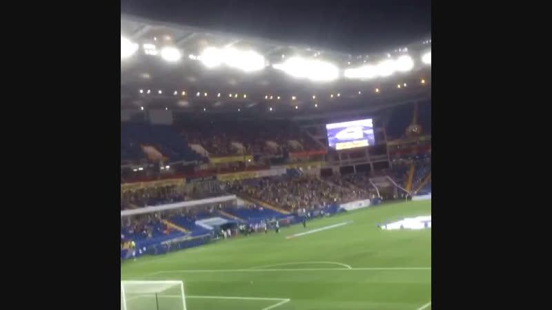 СтадионРостовАренаДон