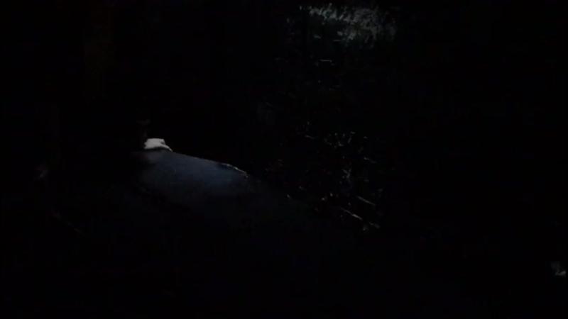 Гриша в гробу
