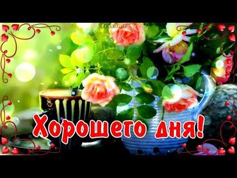 Хорошего дня! Отличного настроения! Пожелания родным и друзьям!