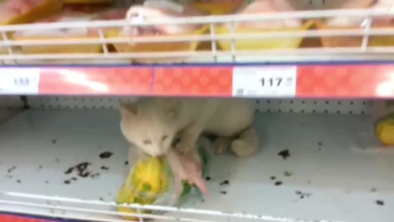 Операция супермаркет Это Россия