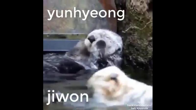Yunhyeong and bobby be like