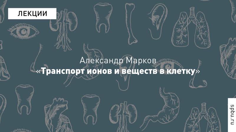 Александр Марков «Транспорт ионов и веществ в клетку». Курс «Введение в физиологию»