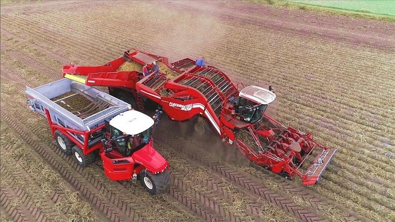 Potato Harvesting Grimme Ventor 4150 Vervaet Hydro Trike xl Ploegmakers Rips