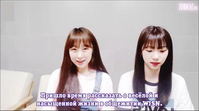 WJSN Cosmic Girls Космические новости с Ёрым и Субин 12 06 2018