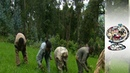 Why Are People Starving In Booming Ethiopia