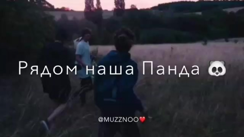 _dik_sag