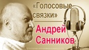 Андрей Санников Голосовые связки