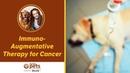 Иммуномодулирующая терапия рака Immuno Augmentative Therapy for Cancer