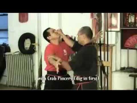 Hung Gars 10 Special Hands aka 10 Killing Hands