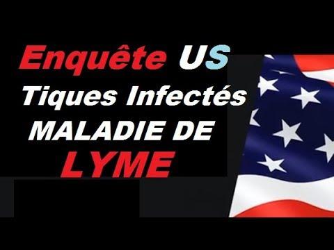 REGARDEZ l Armée US Balance des Insectes Infectés sur sa Population
