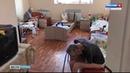 Директор частного приюта для пожилых «Надежда» объявлен в розыск