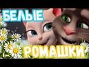 Ну просто Очень Красивая Песня 💗 Белые Ромашки 💗 В Стиле Ласковый Май поет 💗 Том и Анжела