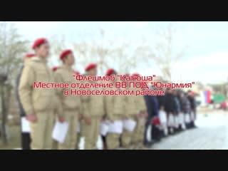 Флешмоб Катюша Местное отделение ВВ ПОД Юнармия в Новоселовском районе