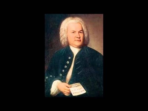 И С Бах Концерт для скрипки с оркестром ля минор 1 я часть